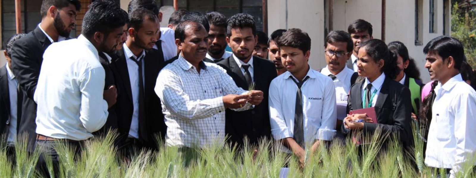 Visit to wheat research station